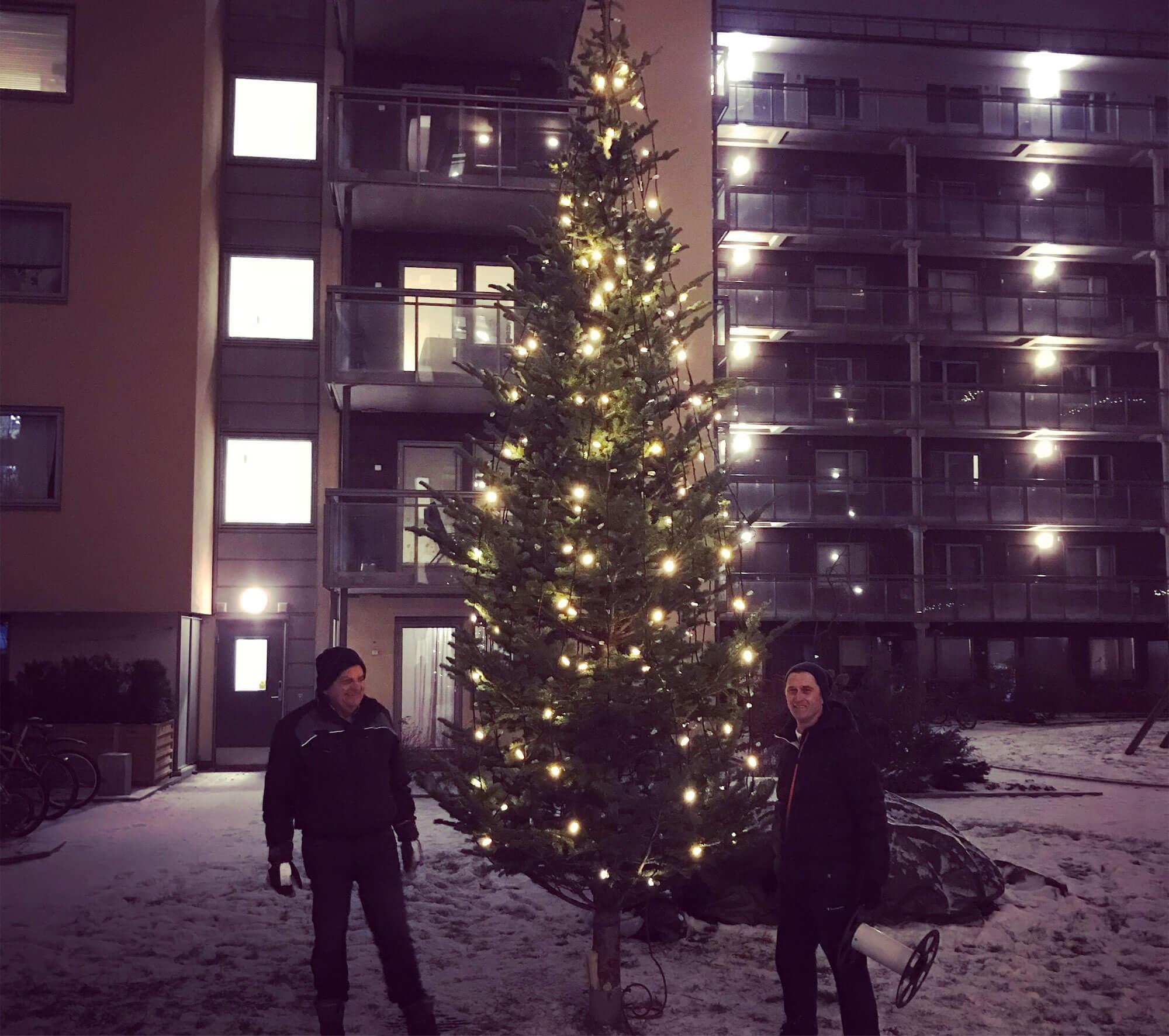 Stort juletre utenfor leilighetsbygg